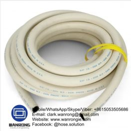 Steam Hot Washdown Hose Supplier
